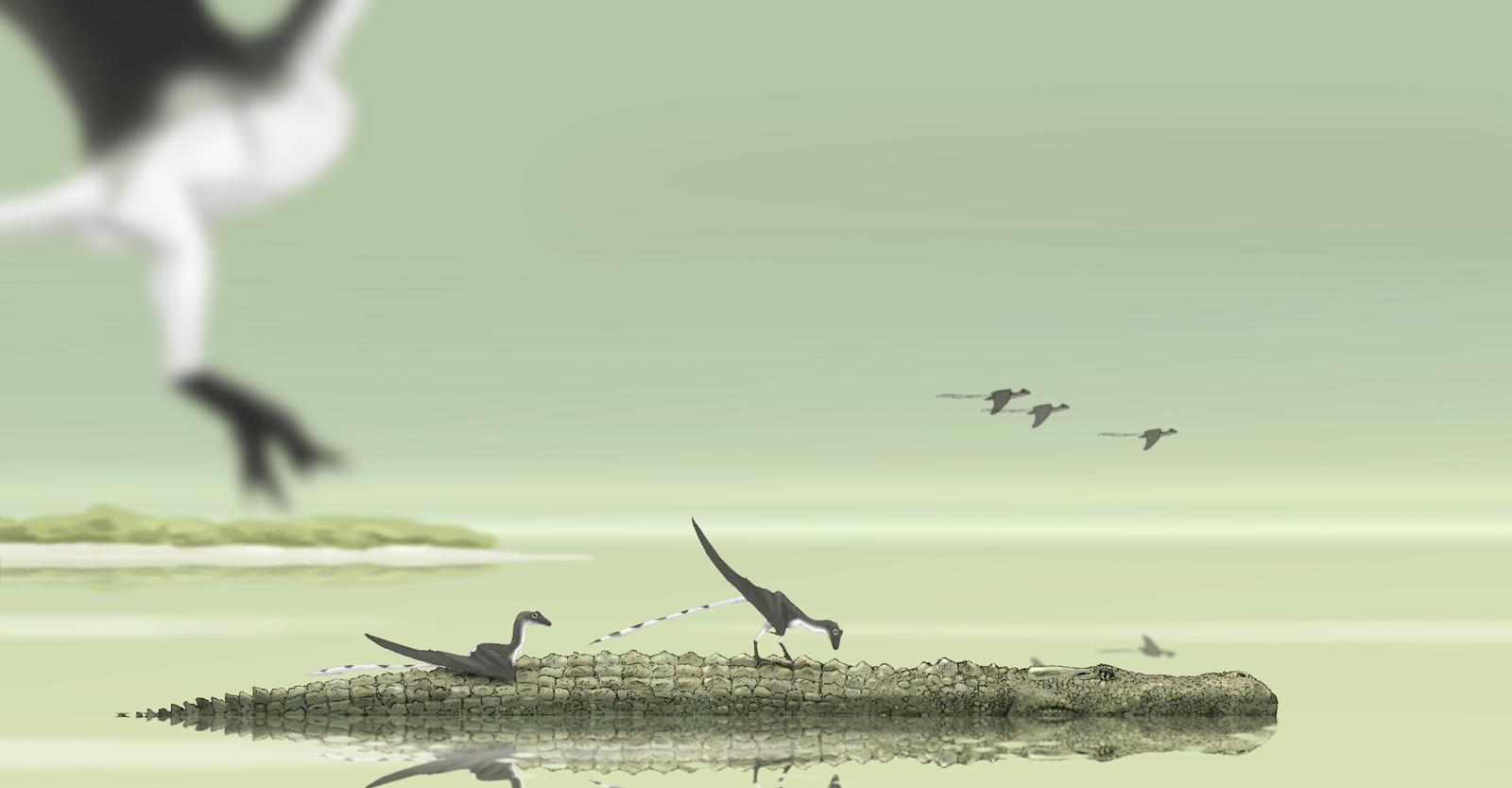 South america, 12 million years ago