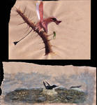 All Yesterdays pterosaurs