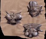 Three mongolian noses