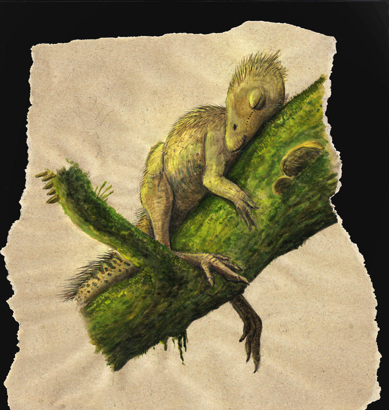 Sleeping Trinisaura