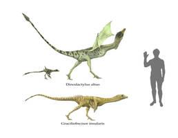 draconic fauna of New Zealand by Hyrotrioskjan