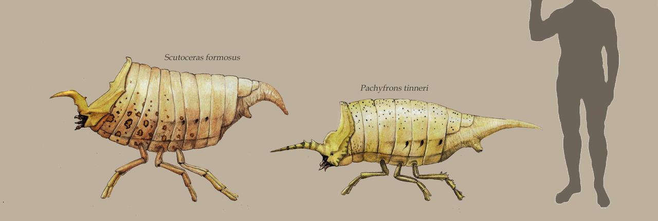 Monsters on six legs by Hyrotrioskjan
