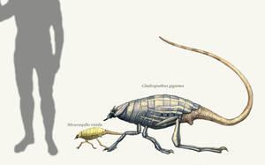 Gladiognathus by Hyrotrioskjan