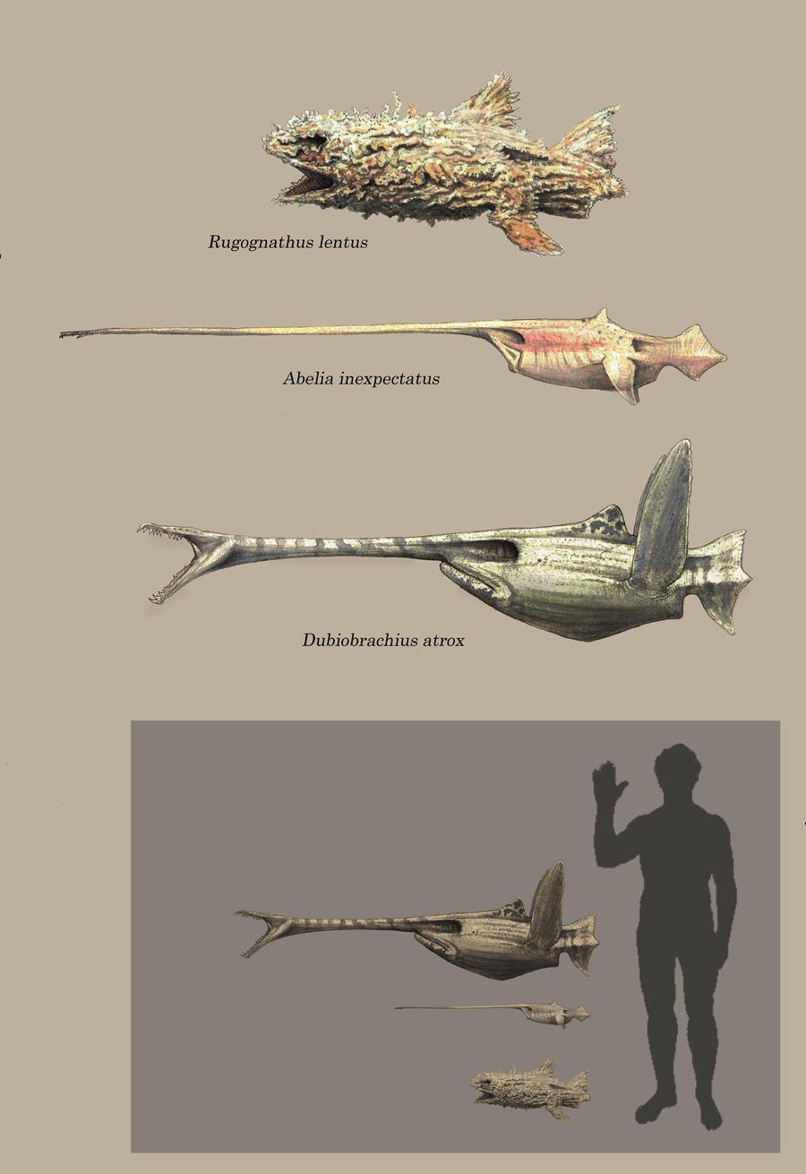 Jaws! by Hyrotrioskjan
