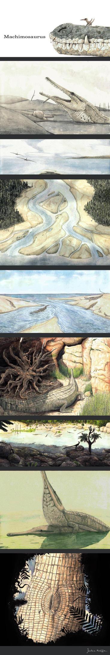 Machimosaurus cycle by Hyrotrioskjan