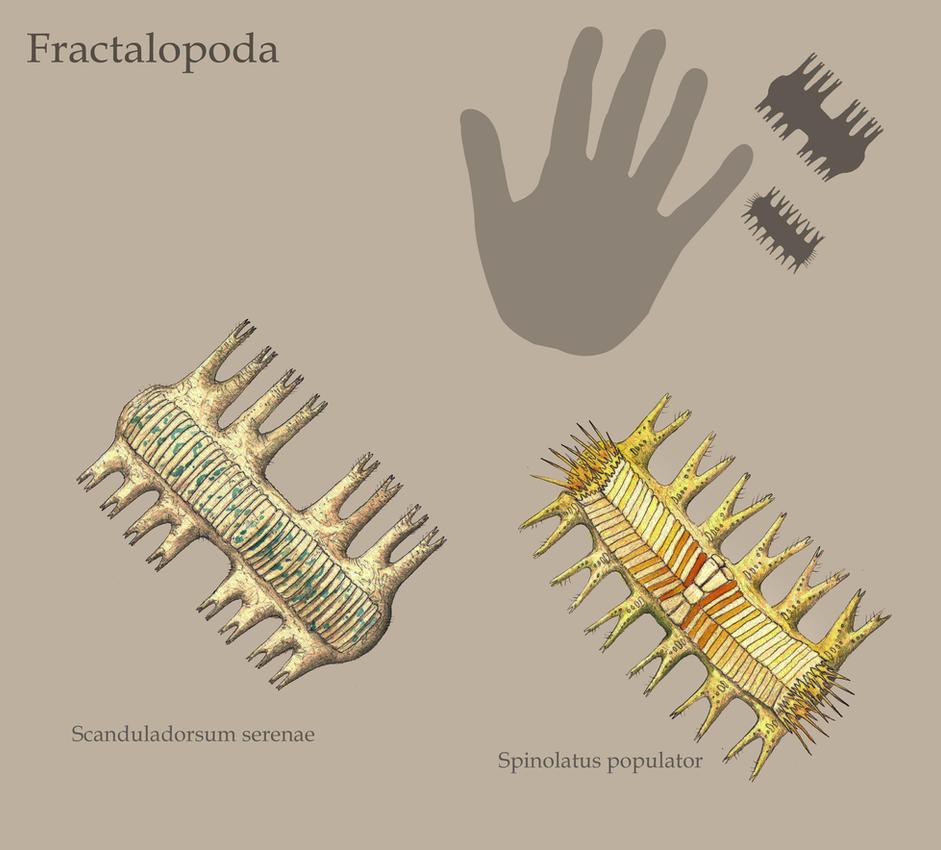 Fractalopoda by Hyrotrioskjan