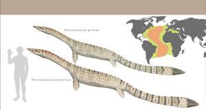 Natrixosaurus, past and present