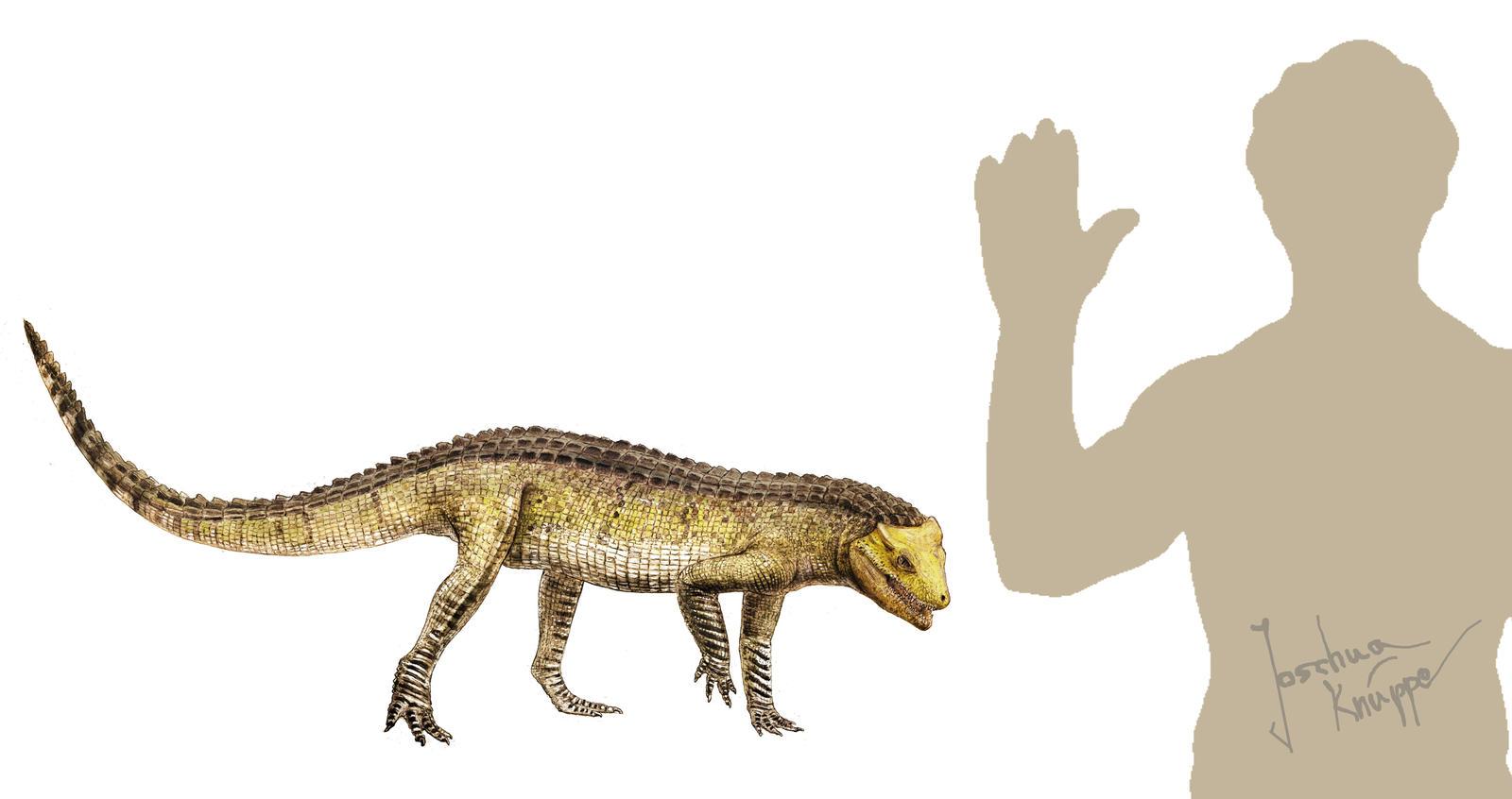 Libycosuchus brevirostris by Hyrotrioskjan