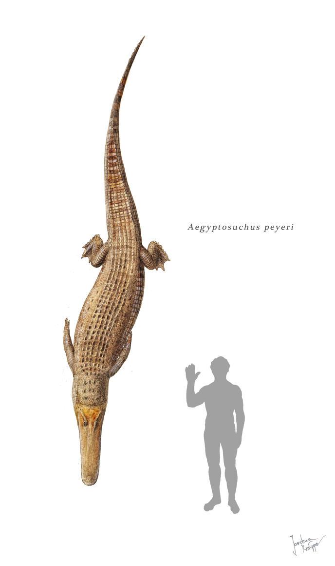 Aegyptosuchus by Hyrotrioskjan