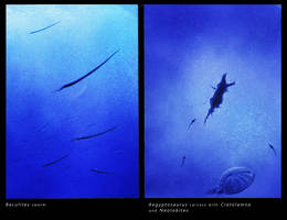 Back in the deep blue by Hyrotrioskjan