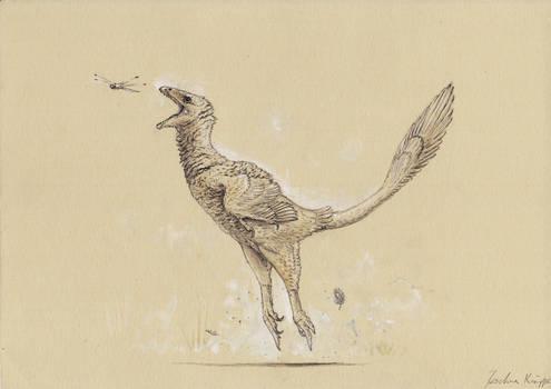 Sketchy Balaur