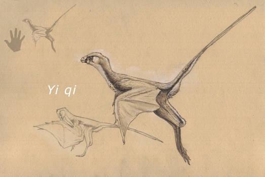 Yi qi