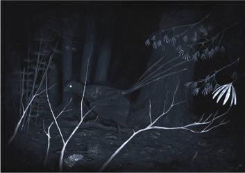 The Dark Yi