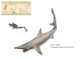 Krill shark by Hyrotrioskjan