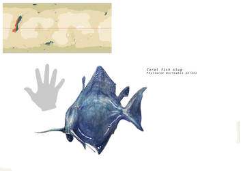 Coral fish slug