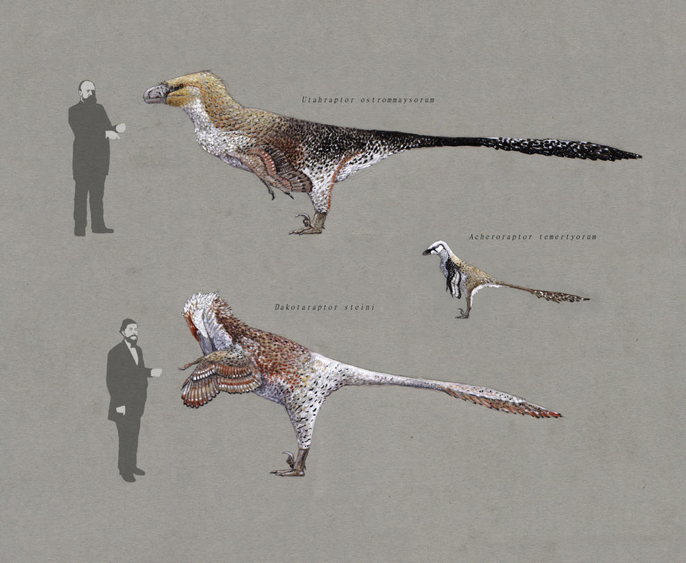Dakotaraptor and Utahraptor 2.0 by Hyrotrioskjan