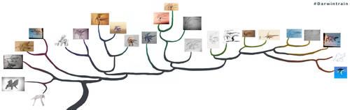 Darwintrain phylogeny