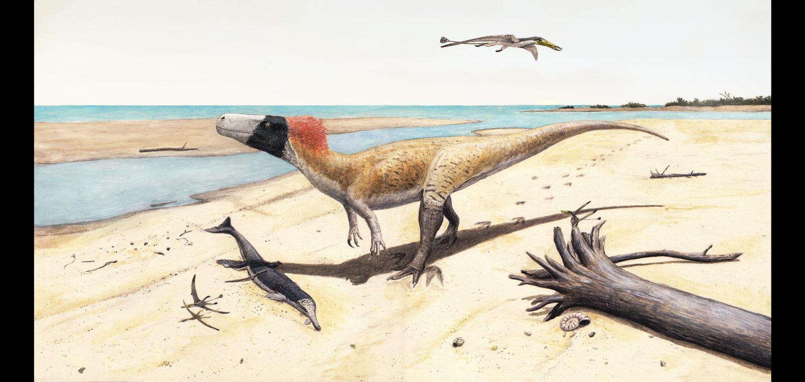 Wiehenvenator albati by Hyrotrioskjan