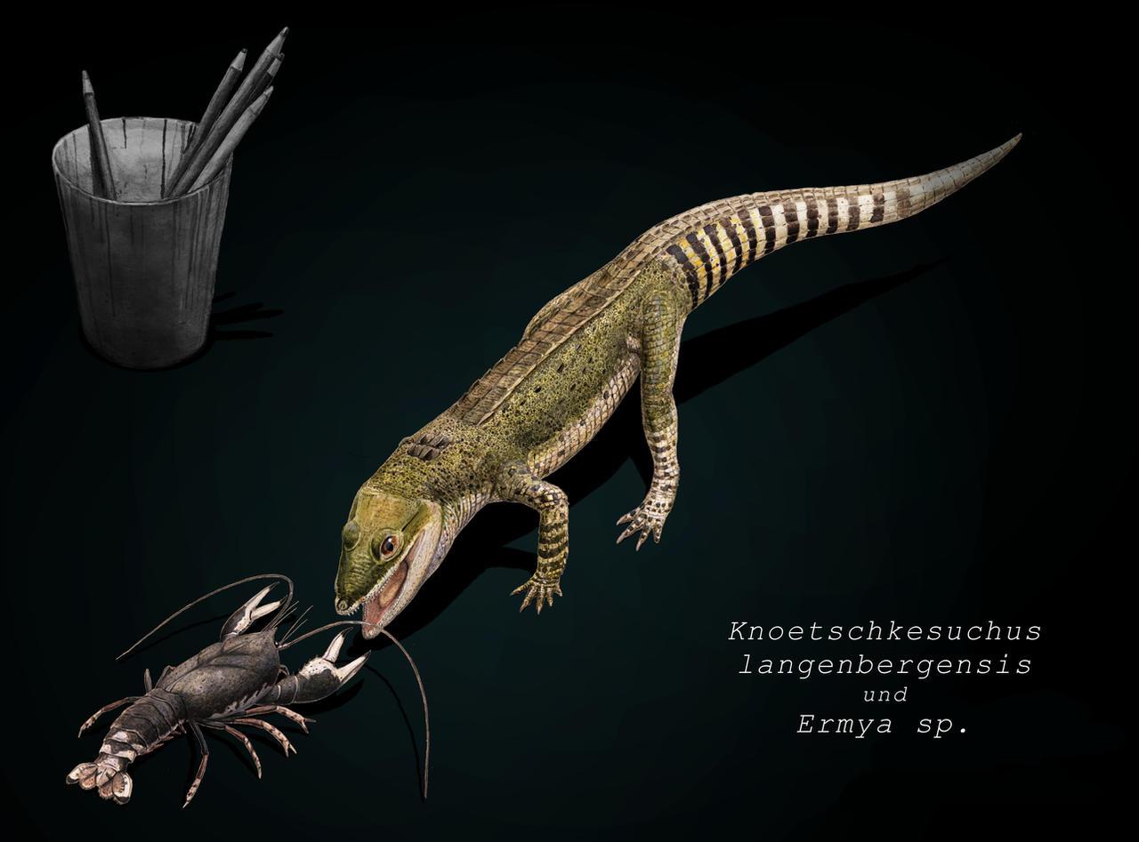 Knoetschkesuchus by Hyrotrioskjan