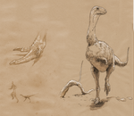 Vespersaurus sketches