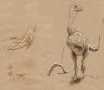 Vespersaurus sketches