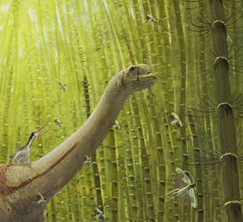 The Europasaurus Graphic Novel