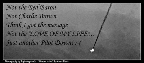Pilot Down Anari-Davis