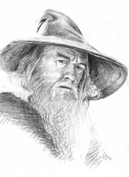 Gandalf by doma22