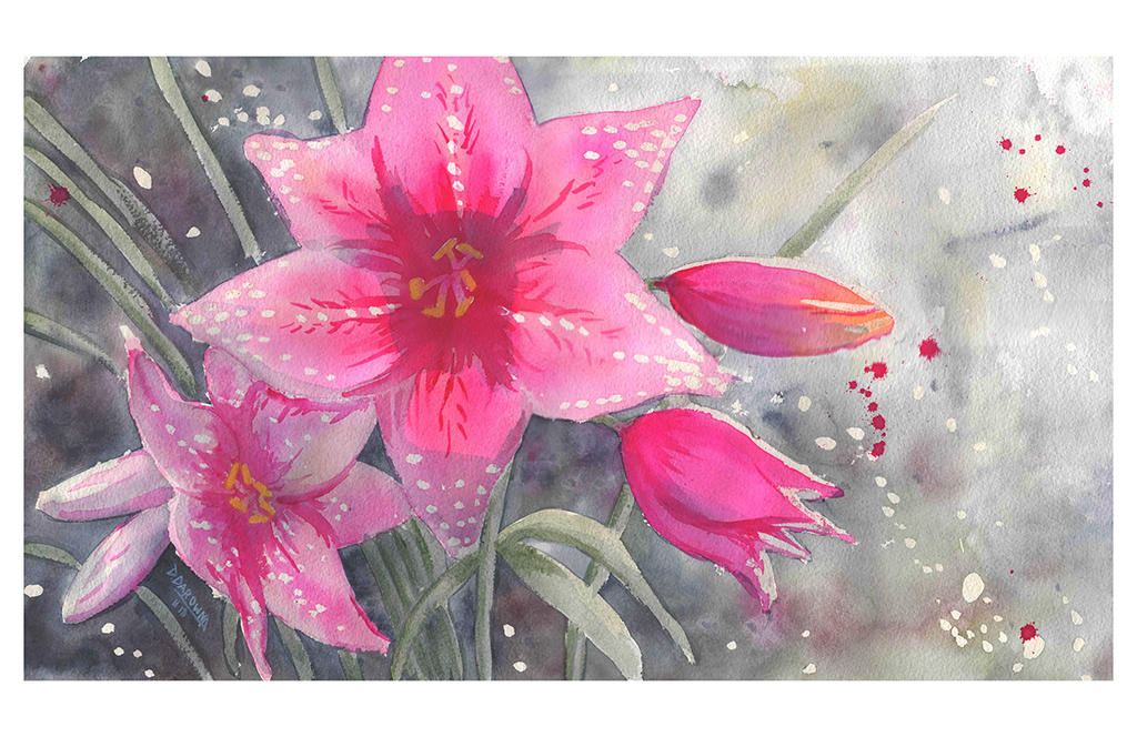 Pink Lilies by doma22