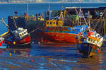 HARBOUR COLOURS by TADBEER