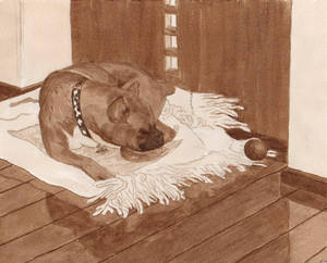 Paola's Dog