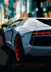 Lamborghini Vector Colored