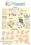Tarma Visual Guide