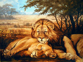 Lazy Day Lions by Damalia