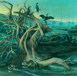 Dawn Cormorants Mural Concept