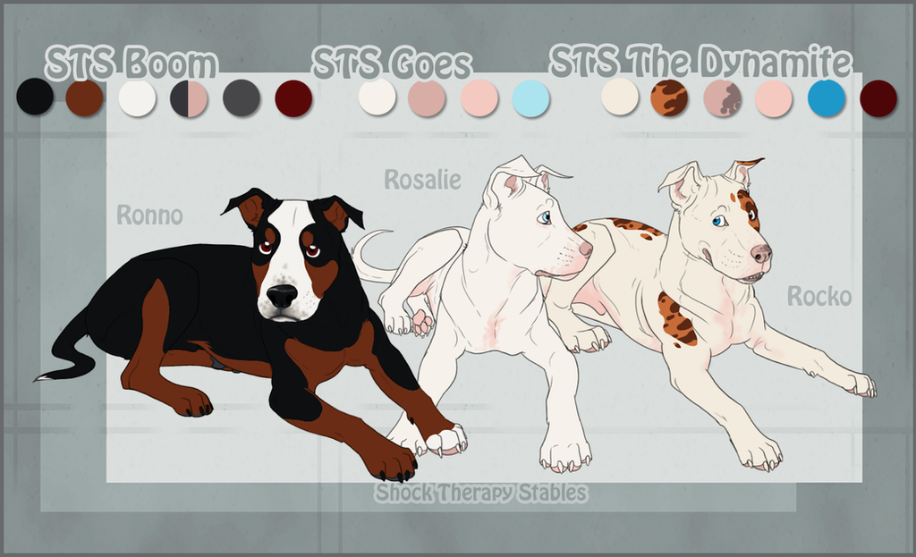 Sts dog ronno rocko and rosy by shocktherapystables on deviantart