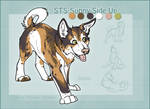 STS Dog- Sunny