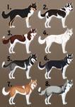 Point Auction- Siberian Huskies 2 CLOSED