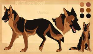 STS Dog - Veyron