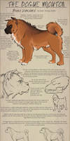 The Dogue Mouton pg2 - Breed Standard