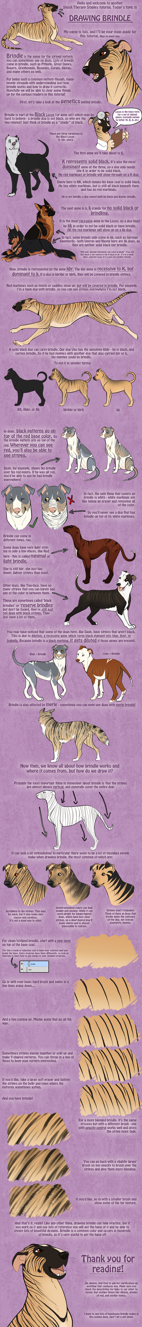 Tutorial - Brindle in Dogs by ShockTherapyStables