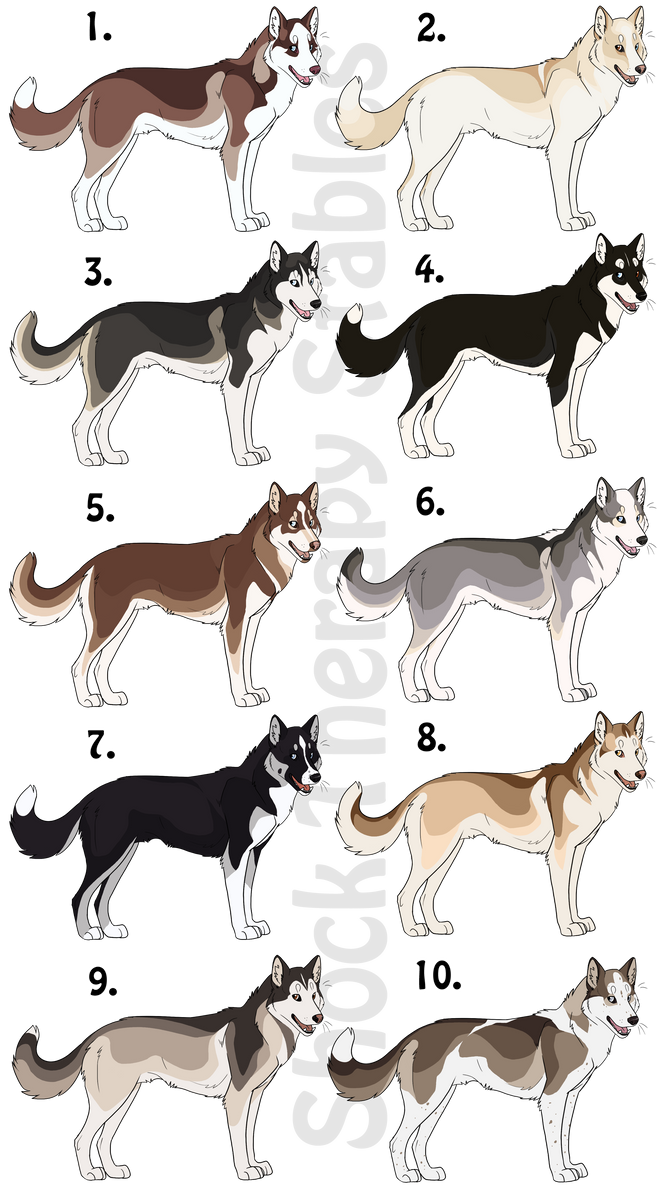 Husky Adoptables 3 - CLOSED by ShockTherapyStables on DeviantArt