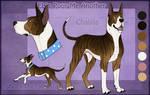 STS Dog - Chablis