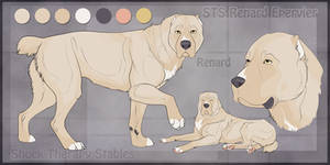 STS Dog- Renard