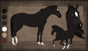 STS Horse - Chief