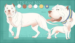 STS Dog- Boss by ShockTherapyStables