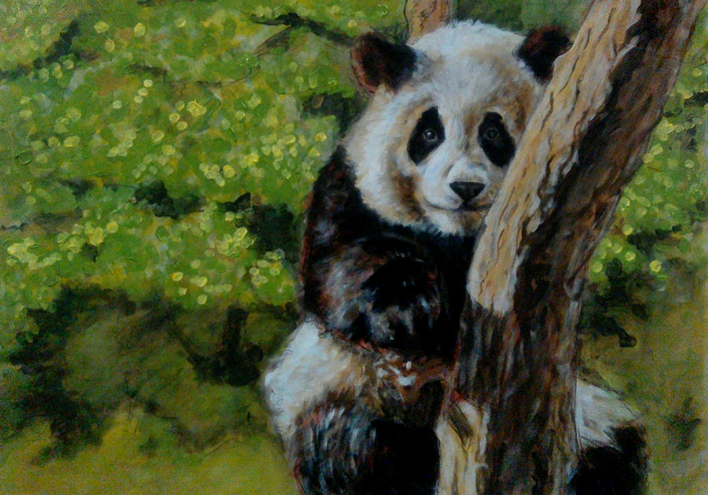 Panda Themed Baby Room Decor Aus