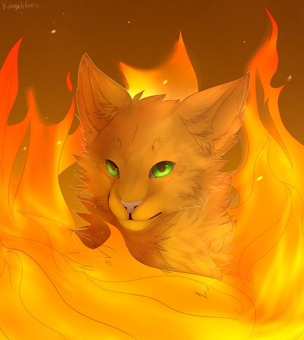 Firestar by onzuna on DeviantArt Warrior Cat Drawings Firestar