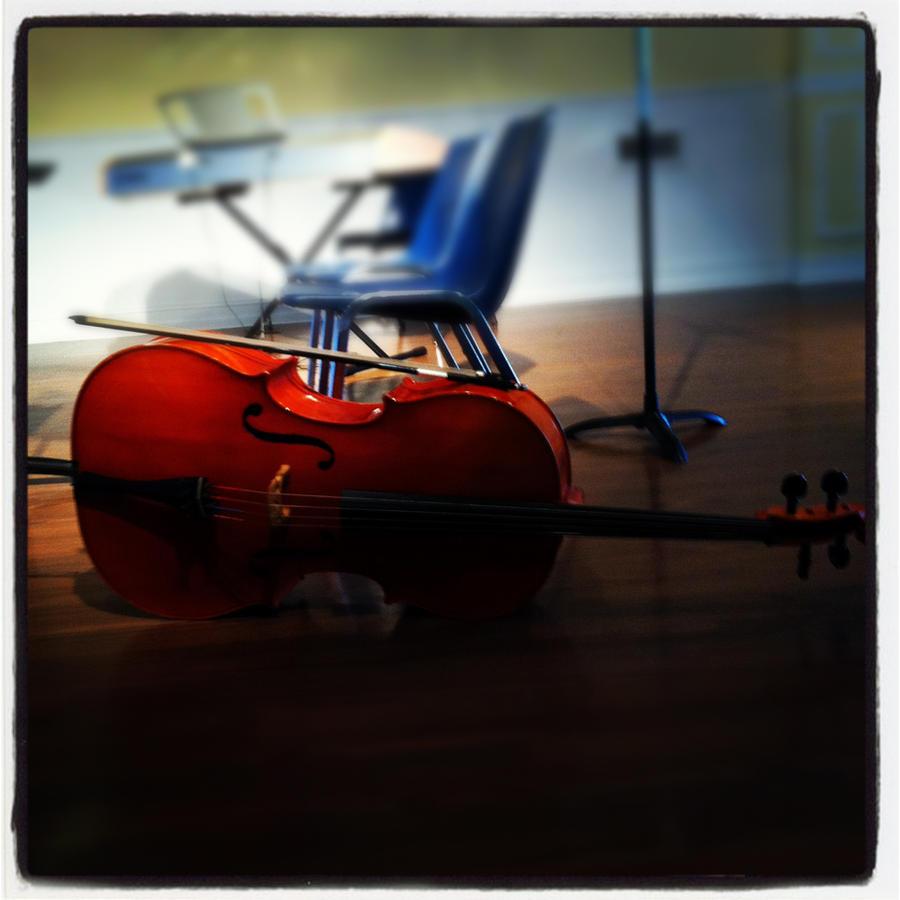 My Beloved Cello Shuna by Horsegirl558