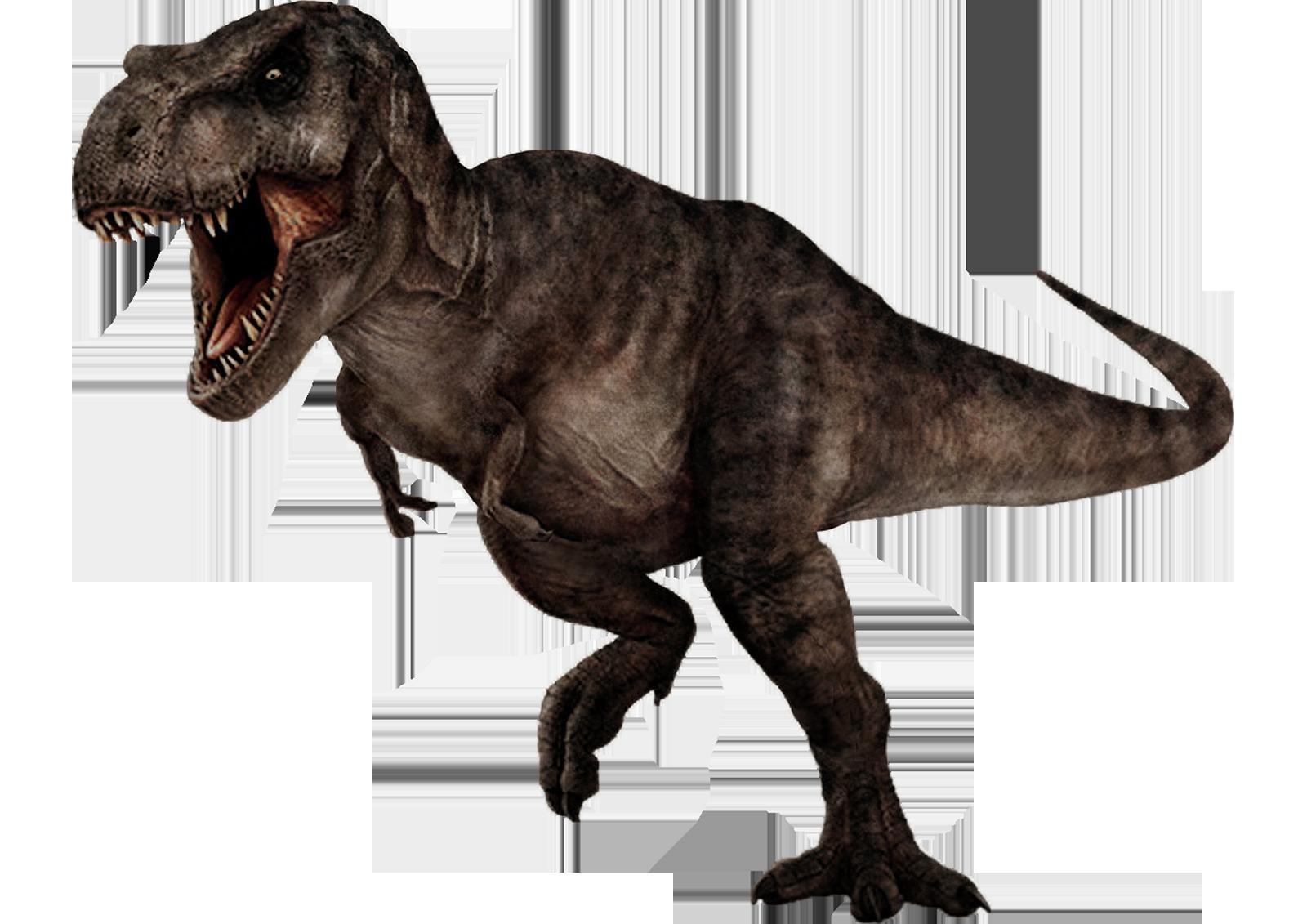 Tyrannosaurus Rex 2 By Darbarrrr On Deviantart